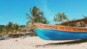 Strand Palmen Boot