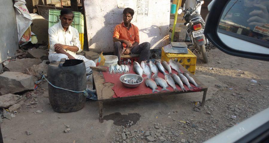 Verkäufer Fisch Stand Indien