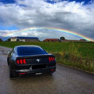 Ford Mustang Heck fern