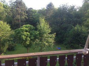 Eigentumswohnung Balkon mit Blick auf den Garten